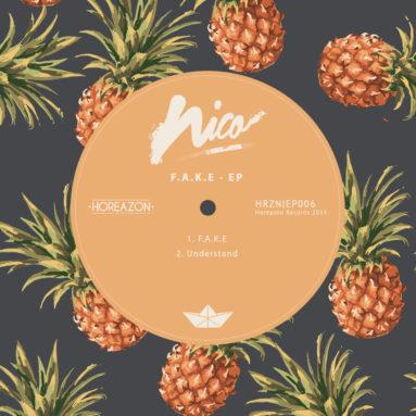 Nico - F.A.K.E